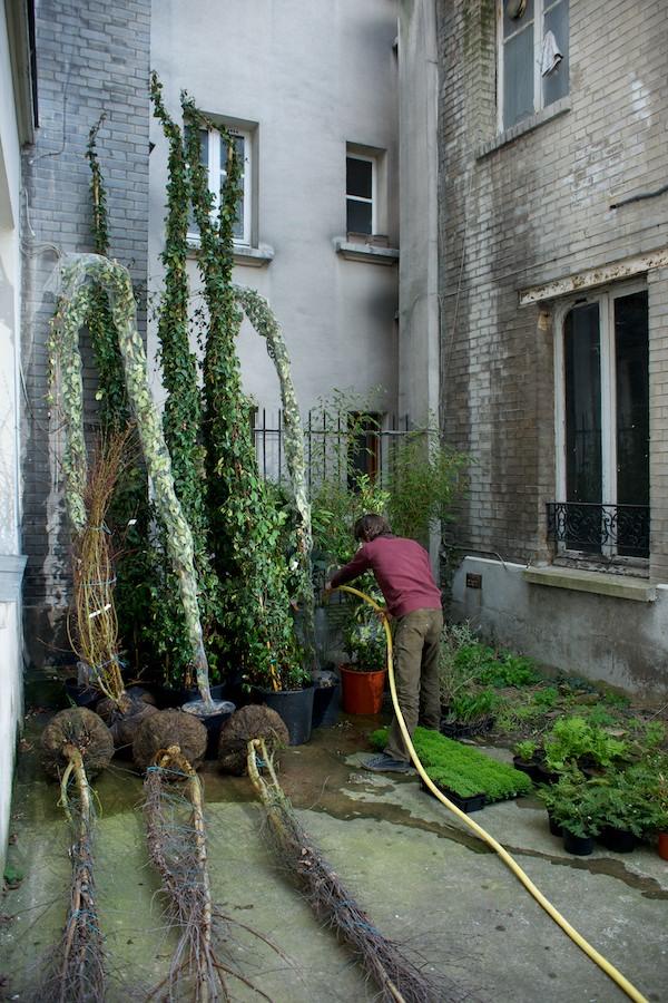 David Jeannerot Renet & Les Mauviases Graines —24